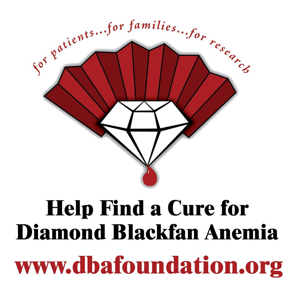 Help Fund DBA Research!